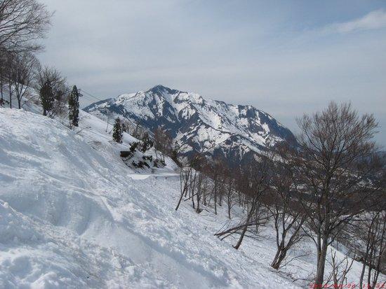 春スキー|シャルマン火打スキー場のクチコミ画像3