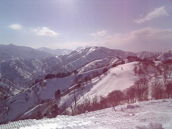 春はやっぱりココ! 奥只見丸山スキー場のクチコミ画像