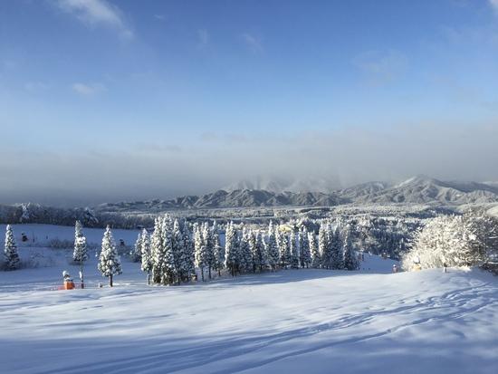 新雪~|鷲ヶ岳スキー場のクチコミ画像