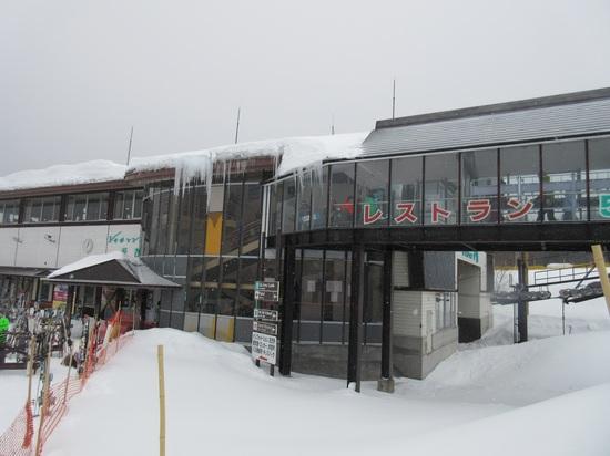 魔法の粉雪が敷きつめて有るみたい!|戸隠スキー場のクチコミ画像