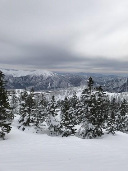 The Day!|かぐらスキー場のクチコミ画像