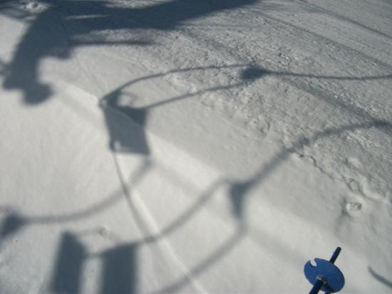 春ですね|カムイみさかスキー場のクチコミ画像