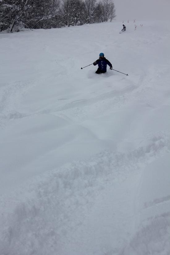 ほろたちスキー場のフォトギャラリー5