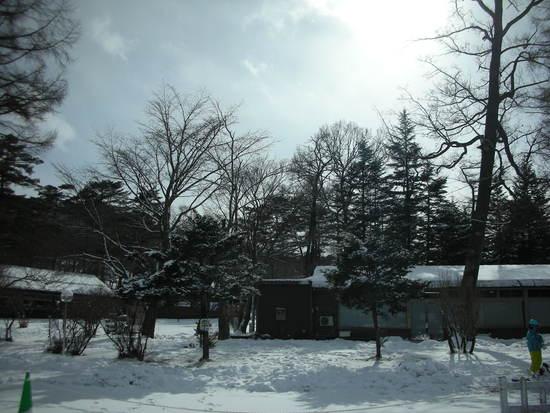 雪景色の軽井沢|軽井沢プリンスホテルスキー場のクチコミ画像