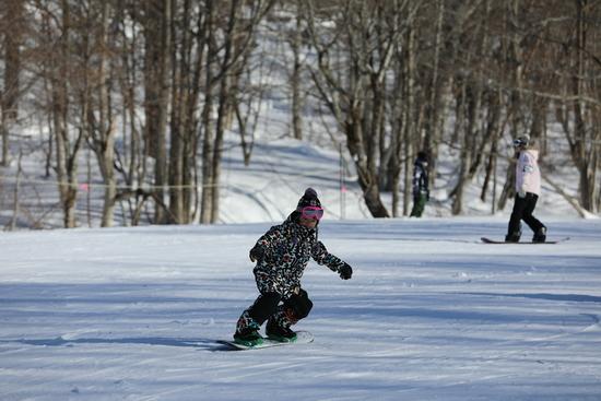 雪質よし!インストラクターさん楽しい!|たんばらスキーパークのクチコミ画像