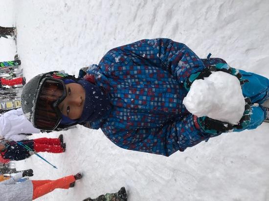 雪質サイコー|ノルン水上スキー場のクチコミ画像