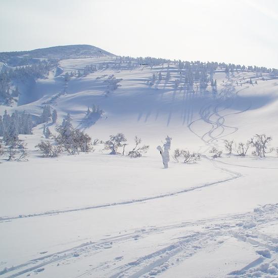 晴天! 八甲田スキー場のクチコミ画像