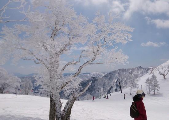 朝は最高でした。|苗場スキー場のクチコミ画像