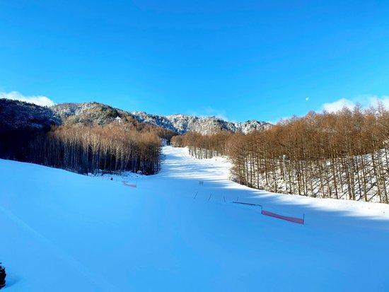 八千穂高原スキー場のフォトギャラリー5