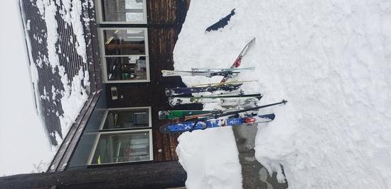 最高の雪質でした|オグナほたかスキー場のクチコミ画像