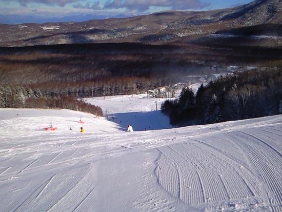 50%OPEN|しらかば2in1スキー場のクチコミ画像