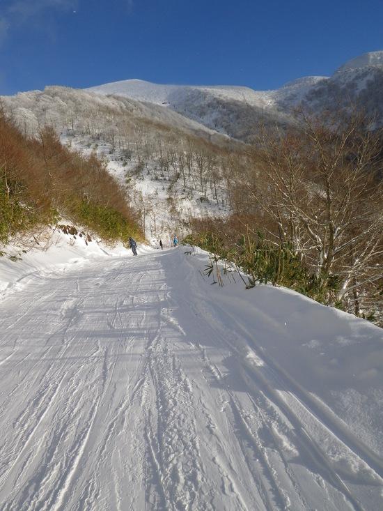 シーズン初めはココ!|箕輪スキー場のクチコミ画像1