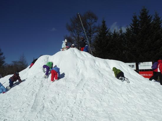 孫のスキー初挑戦 軽井沢スノーパークのクチコミ画像3