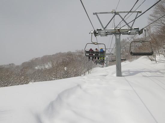 雪が多い今シーズン!|ダイナランドのクチコミ画像