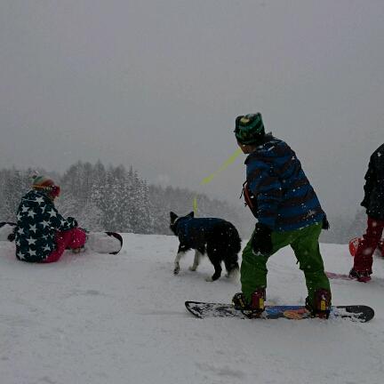 やはり半日で十分と思う。|白馬さのさかスキー場のクチコミ画像2