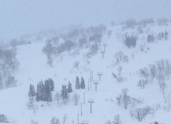 非圧雪主義者ですね。|シャルマン火打スキー場のクチコミ画像