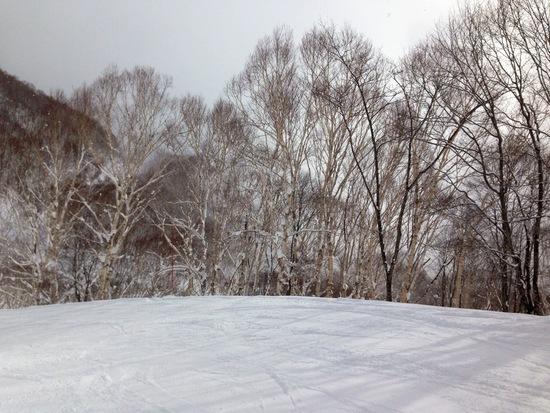 晴れた日に滑りたい。|妙高杉ノ原スキー場のクチコミ画像