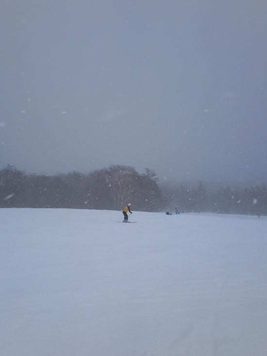 すみかわスキー場! みやぎ蔵王スキー場 すみかわスノーパークのクチコミ画像