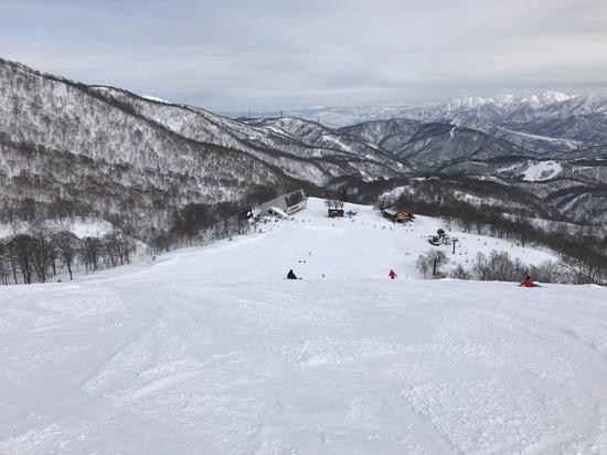 広くて雪ふかふか!|かぐらスキー場のクチコミ画像