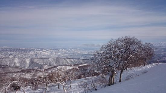 遠くから何回でも来る価値あり。飽きません 野沢温泉スキー場のクチコミ画像