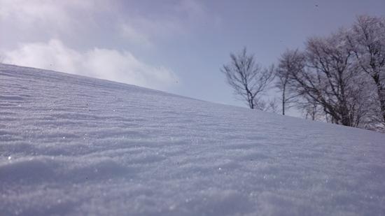 軽パウ 野沢温泉スキー場のクチコミ画像