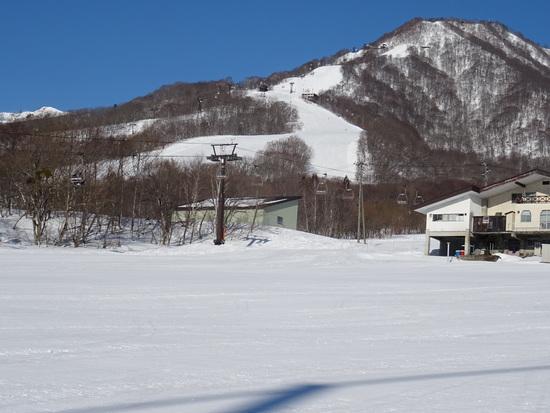広大なスキー場|栂池高原スキー場のクチコミ画像