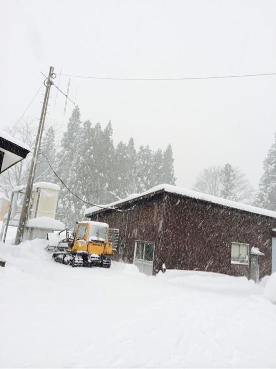 今週も|かぐらスキー場のクチコミ画像