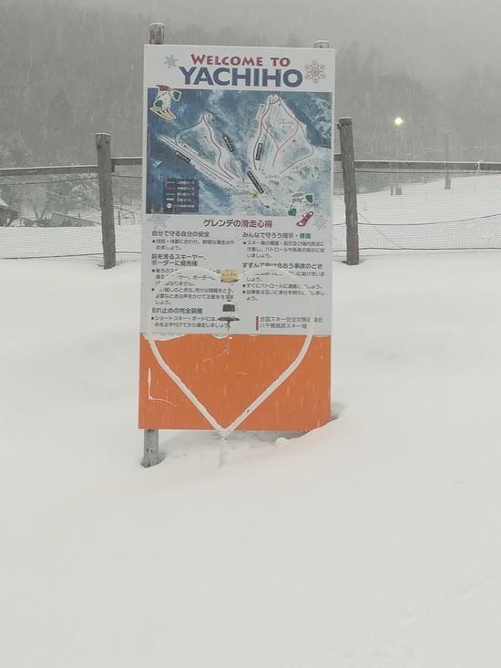 雪質がいい|八千穂高原スキー場のクチコミ画像3
