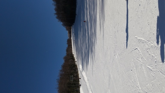 今年も菅平でスキー|菅平高原スノーリゾートのクチコミ画像3