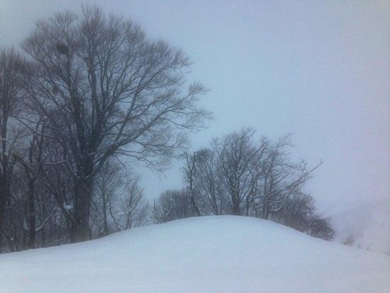 念願の新雪が仇となり キューピットバレイのクチコミ画像