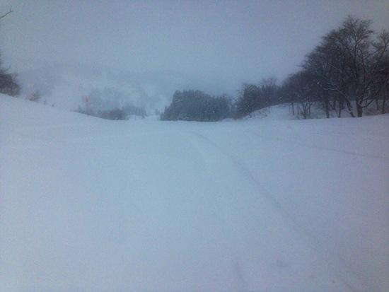 念願の新雪が仇となり|キューピットバレイのクチコミ画像2