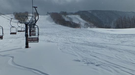 山は吹雪。でも超パウダー。アフターは雪灯篭まつり。|天元台高原のクチコミ画像