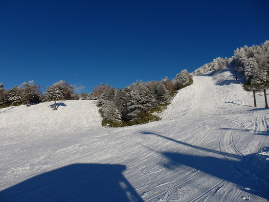 横手と熊の湯 志賀高原 熊の湯スキー場のクチコミ画像2