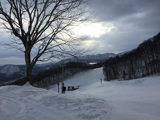 所々にブッシュが見え隠れ|会津高原だいくらスキー場のクチコミ画像