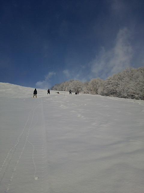 上ふわ 下かり|栂池高原スキー場のクチコミ画像