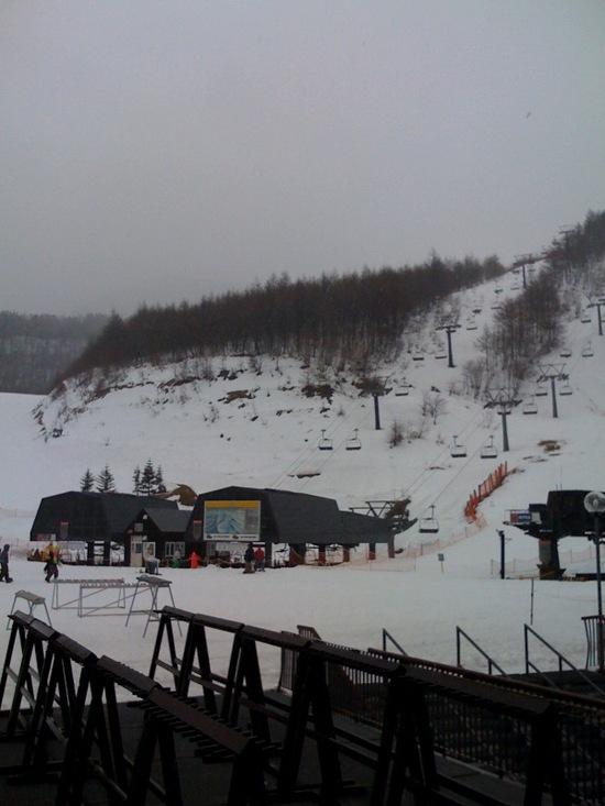 雪質最高です!!|川場スキー場のクチコミ画像