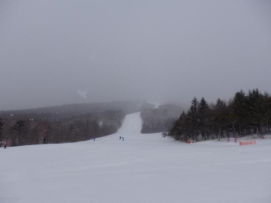 降雪があり滑りやすくなりました|サンメドウズ清里スキー場のクチコミ画像