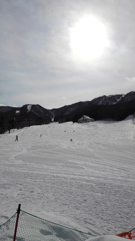 サービスデー☆|水上宝台樹スキー場のクチコミ画像