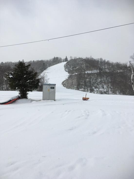 やっと。 飛騨ほおのき平スキー場のクチコミ画像3