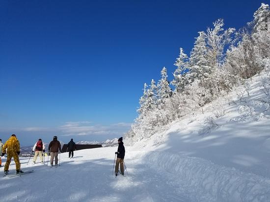 青い空と真っ白な樹氷|志賀高原リゾート中央エリア(サンバレー〜一の瀬)のクチコミ画像