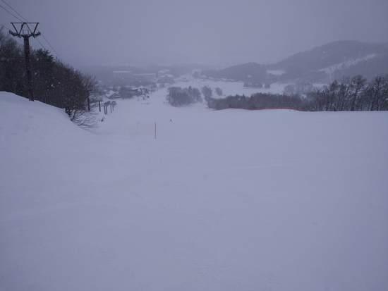 山頂エリアは要注意(笑|北信州 木島平スキー場のクチコミ画像1