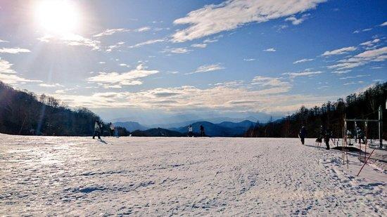 パウダースノー|川場スキー場のクチコミ画像