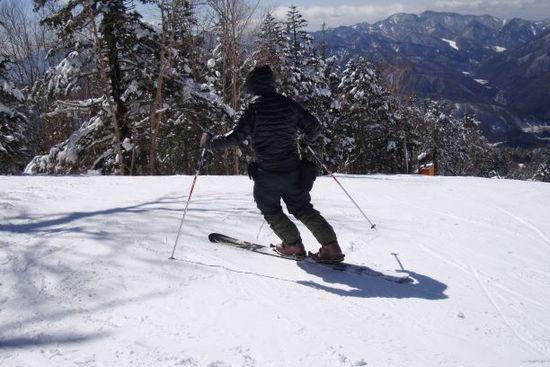 モノスキー?|信州松本 野麦峠スキー場のクチコミ画像