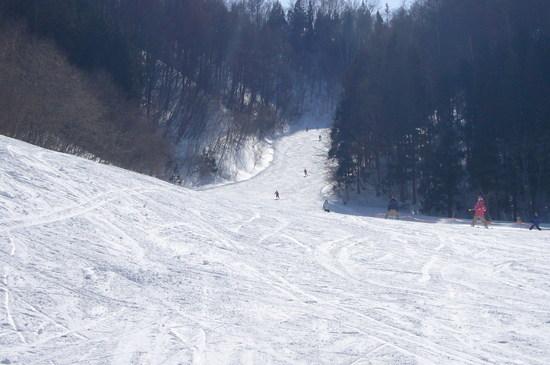 平日はお得|かたしな高原スキー場のクチコミ画像