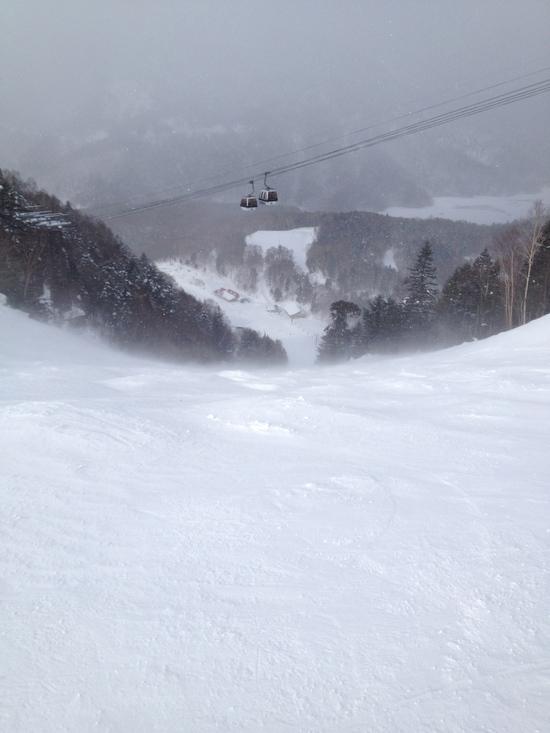平日はファミリーに厳しい(>_<)|丸沼高原スキー場のクチコミ画像