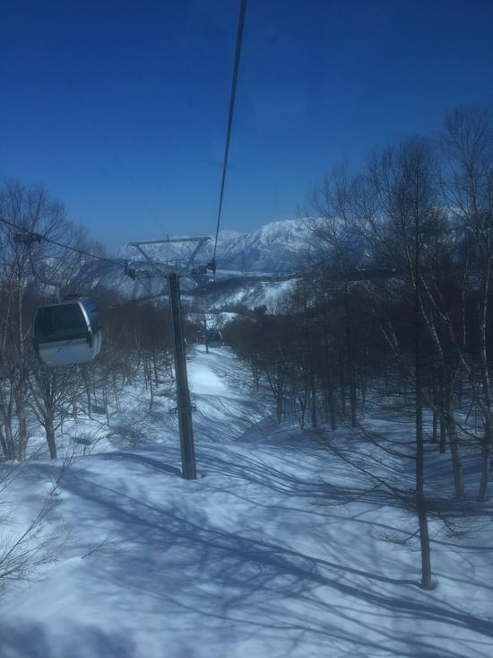 1週間ほど降ってないそうで|かぐらスキー場のクチコミ画像