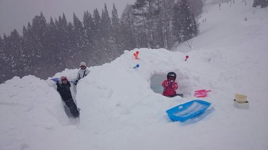 雪一杯!|スノーウェーブパーク白鳥高原のクチコミ画像