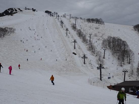 こぶの練習を|白馬八方尾根スキー場のクチコミ画像