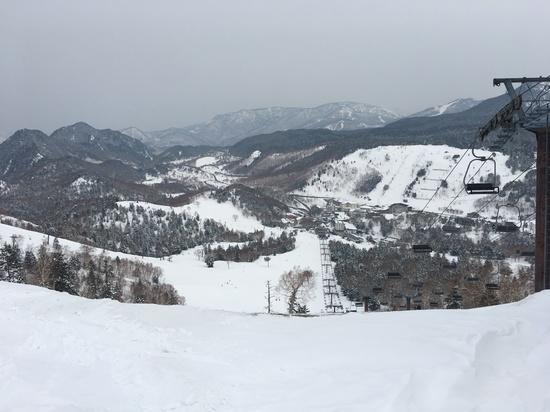 3末でこの雪質|志賀高原 熊の湯スキー場のクチコミ画像