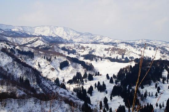 食事が美味しい!|松之山温泉スキー場のクチコミ画像2